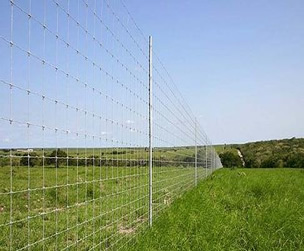 Field Fencing With Fixed Knots Surrounding Type For Farm