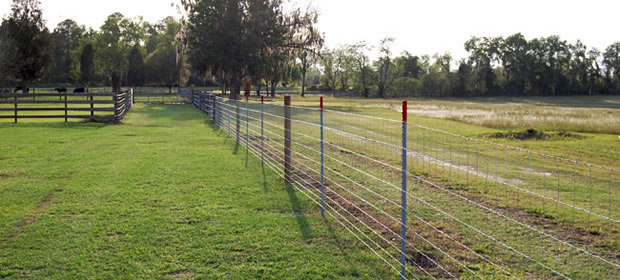 Galvanized Welded Wire Mesh Fence Welded Wire Fence